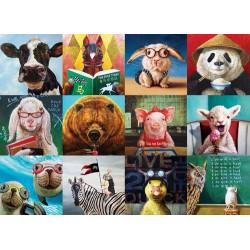 Funny Animals Puzzle - Lucia Hefferman (1000)