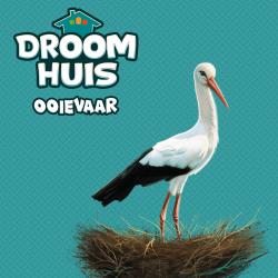 Dream Home: Stork