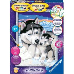 Peinture au numéro - Huskies romantiques