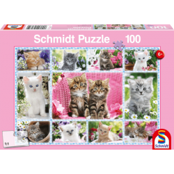Kittens puzzle (100)