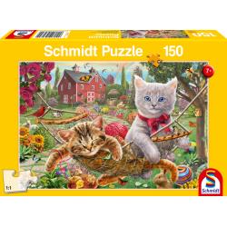 Kitten in the garden (150)