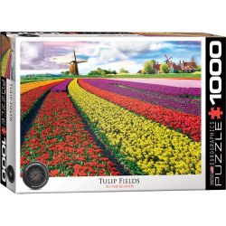 Tulip Fields Netherlands Puzzel (1000)