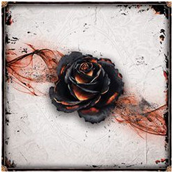 Black Rose Wars